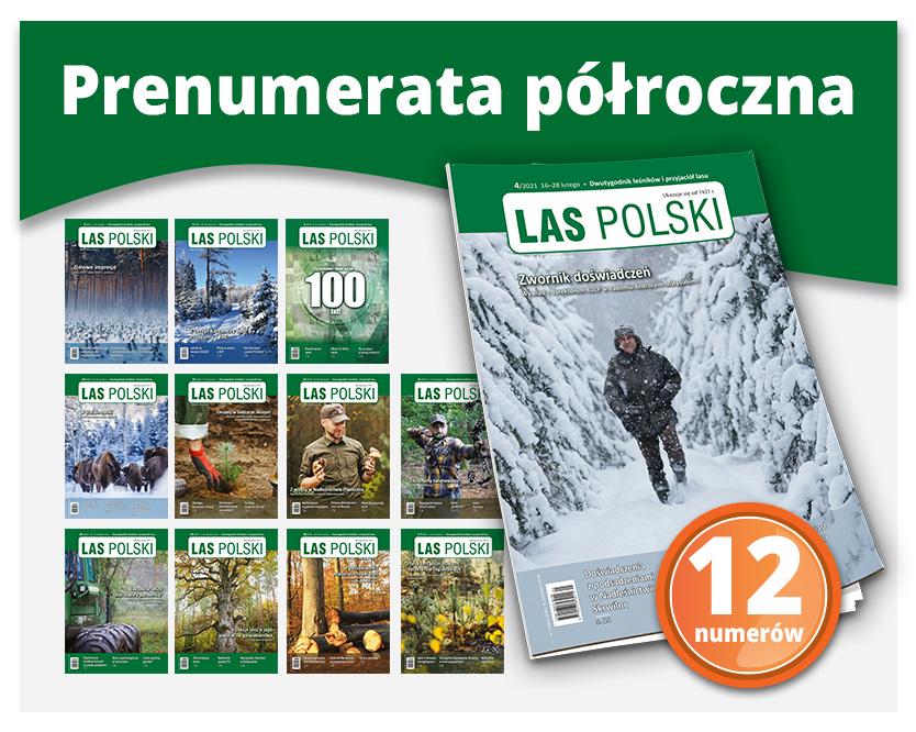 Prenumerata tradycyjna półroczna